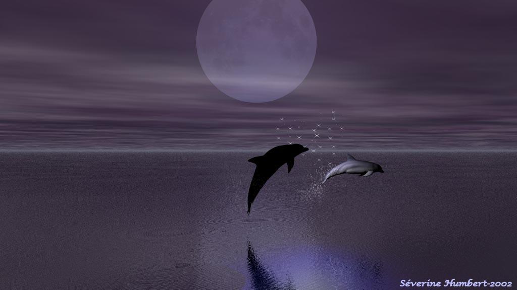 L' Antre de la Lune - Portail Pleine_lune